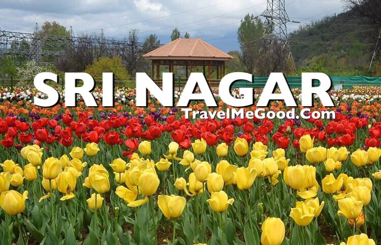 Sri Nagar, Top 10 places to visit in Jammu & Kashmir J&K, Best places, Dal lake, Delhi to Sri Nagar Jammu kashmir, Bus on rent, Car on rent, Bus on hire